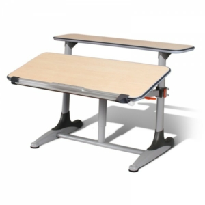NistulGrow Desk - Standard